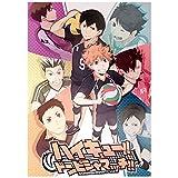 Elibeauty lunanana Haikyuu!! Poster Hinata Shoyo Kageyama