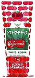 ハグルマ 業務用トマトケチャップ袋1kg