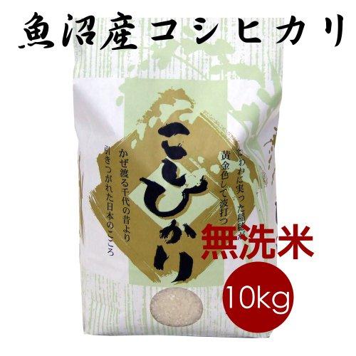 無洗米 魚沼産コシヒカリ 10kg