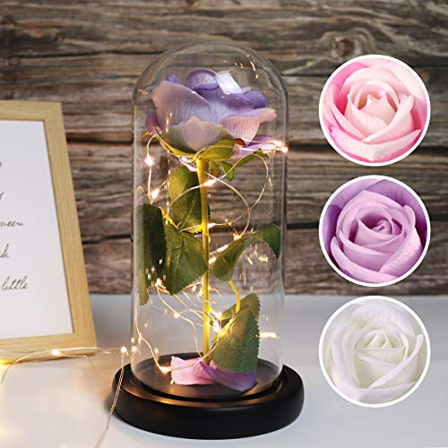 RECUTMS Beauty and The Beast Rose, Purple Rose and Led Light in a Glass Dome for Mothers Day Valentine's Day Home Decor Holiday Birthday Party Wedding Anniversary (Purple)