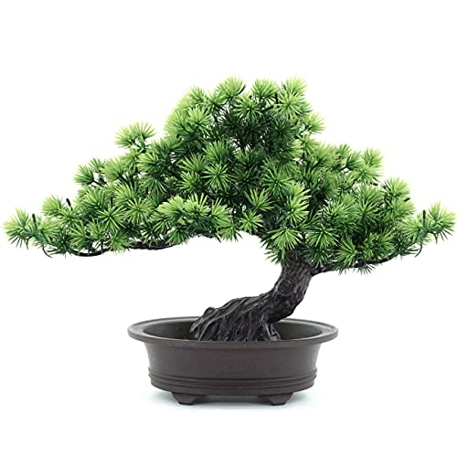 yoerm Artificial Bonsai Tree Japanese Juniper Fake Plants for Home Office Wall Book Shelf Room Decor, Height 9.5'