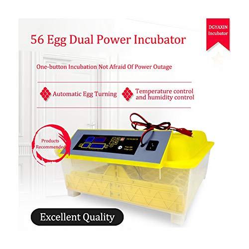 DGYAXIN Incubadora Huevos Gallina, Incubadora Huevo- 56 Huevos, Fuente de Alimentación Dual Multifuncional Digital Inteligente Incubadora, Pollos Patos Aves Codornices Pavos,Yellow