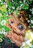 5D子供用フルダイヤモンド書道と絵画、40x50cmフルスクエアダイヤモンド-動物の犬のパターン5DDIYダイヤモンドクロスステッチダイヤモンドモザイク家の装飾