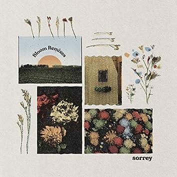 Bloom (Remixes)