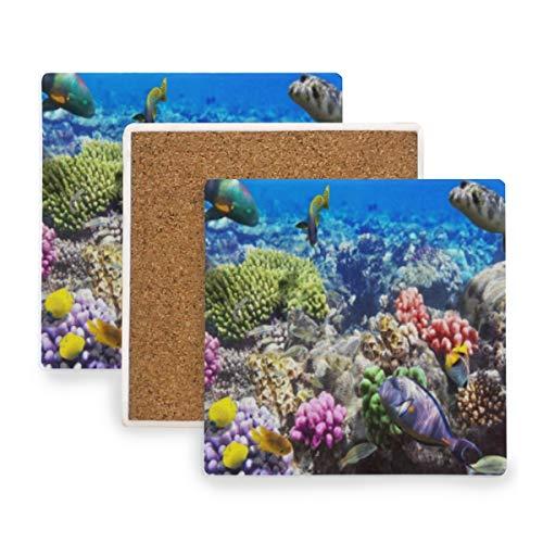 PANILUR Lot Hurghada Riff Korallenfische Rot Ägypten Tiere Wildlife Natur Ozean Aquarium Hawaii Unter Wate,Untersetzer Saugfähige Keramik,für Tassen Tisch Bar Glas(4 Packs)