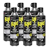 Raid Wasp & Hornet Killer Spray, Outdoor Use Defense System to Attack Bugs, Kills Wasps & Hornets on Contact, Kills Entire Nest, 17.5 OZ Spray (Pack of 6)