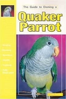 Best free quaker parrot Reviews