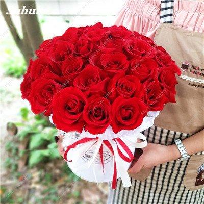 Mixed Seeds Rose, 200 Pcs Rare Bonsai Fleurs Rose, mélanger les couleurs Croissance naturelle Plante en pot pour le jardin Suppies Représentant Amour 5