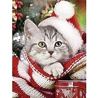 クリスマス5DDIYダイヤモンド絵画猫フルドリルスクエアダイヤモンド刺繡犬冬の装飾ラインストーンの家の写真