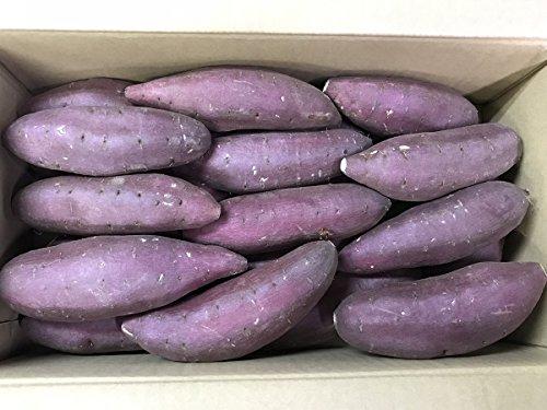 熊本県産 さつまいも シルクスイート A等級・5kg (Lサイズ(24〜15本入り)5kg箱)
