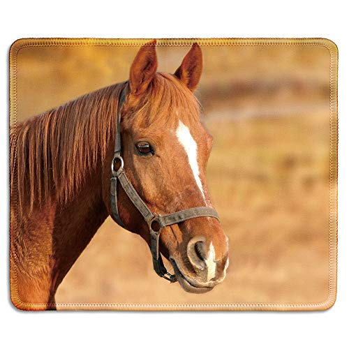 dealzEpic - Art Mousepad - Natural Rubber Mouse Pad Printed with Red Horse with a White Blaze Marking - Stitched Edges - 9.5x7.9 inches
