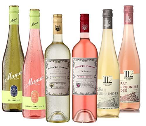 Probierpaket SOMMERWEINE Weiß und Rosé (6 x 0,75l) – Probierpaket aus besten Weißweinen und Roséweinen für gesellige Sommerabende