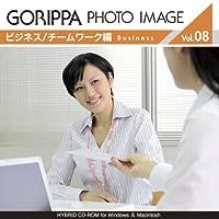 GORIPPA PHOTO IMAGE vol.8 「ビジネス/チームワーク編」