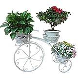 ZHBD Expositor de Maceta Bicicletas Tiesto Soporte estantes de Metal decoración del jardín de la Planta del Soporte de exhibición de Interior al Aire Libre por pasillos y Jardines de la terraza