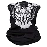 avidollo Cooling Neck Gaiter Neck Gaiter Skull Face Mask Summer Protection from Sun Dust Wind Moisture Face Mask Headwear Headband Bandana Shield for Motorcycle Bike Riding Fishing Hunting Cycling