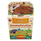 Little Pals Grow Your Own Kits