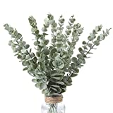 Momkids 12pack Eucalyptus Stems Real Touch Leaf Fake Greenery Decor Plastic Artificial Plants Faux...
