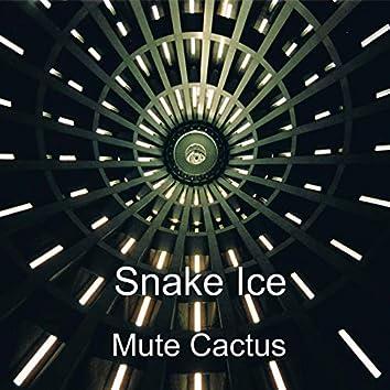 Mute Cactus