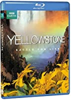 Yellowstone: Battle for Life [Blu-ray] [Import]