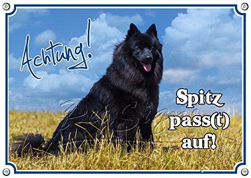 Petsigns Hundewarnschild Großspitz - Spitz Pass(t) auf! stabiles Metallschild - 1A Qualität, 3. DIN A3
