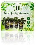 OG Huerto Urbano - Kit Completo de 4 Hierbas aromáticas (Tomillo, Cilantro, Albahaca y Perejil), 100% Semillas Bio, NO GMO y Origen EU. Todo Incluido para Cultivar Fácilmente Tus Hierbas Frescas.