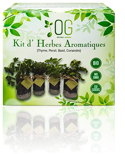 OG - Kit d´ 4 herbes aromatiques - 100% BIO non GMO - Jardin potager d'intérieur - Graines d'origine EU - Thym, Coriandre, Basilic, Persil - Tout compris pour cultiver des herbes fraîches.