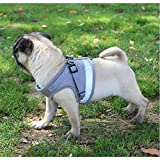 Anlitent Soft Jacket Step in Dog/Cat Harness and Leash Set for Walking, Quick