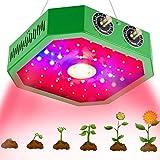 QIDIAN LED coltiva la Luce, COB pianta Full Spectrum Crescere Luce con Dual Switch & Chips Doppio per idroponici Indoor Plants Veg e Fiore