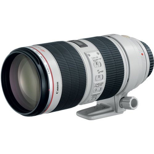 Canon EF 70-200mm f/2.8L IS II USM Telephoto Zoom Lens for Canon SLR Cameras