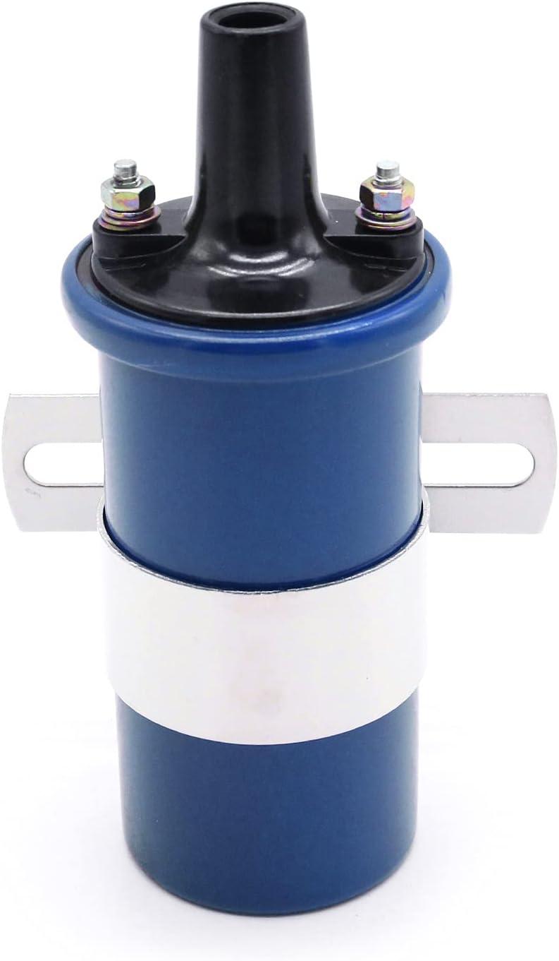 Fesjoy Bobina de Encendido, 8202 Bobina de Encendido electrónica Azul 12V 45.000 voltios