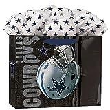 Turner Licensing Dallas Cowboys Medium Gift Bag GoGo, MULTI
