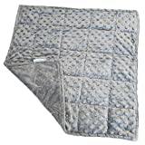 FX Treasures Weighted Lap Pad for Kids - Great Weighted Lap Blanket for Sensory Processing Disorder - Office and Daily Supplies (Gray, 3lb)
