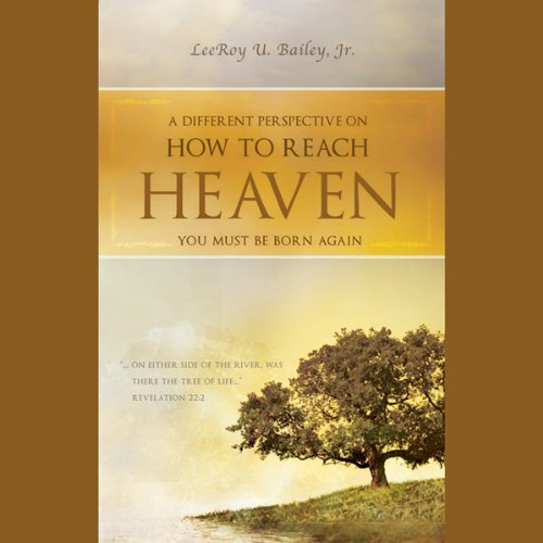 A Different Perspective on How to Reach Heaven audiobook cover art