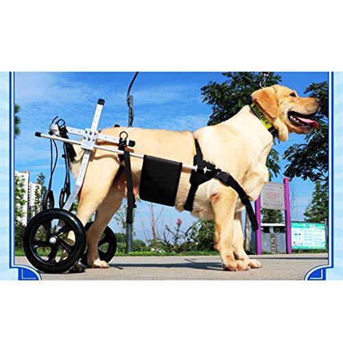 KHUY Silla de Ruedas para Perro Mediana Grande Carro para Perros Aparato Ortopédico de Pierna Patas/Gato/Perrito de Hind Rehabilitación, 2 Ruedas (Size : X-Large)