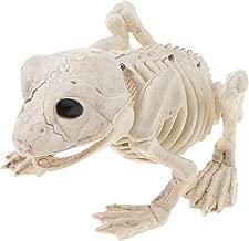 Halloween Animal Skeleton Creepy Props Halloween Decorations Creepy Decor Party Props - Frog