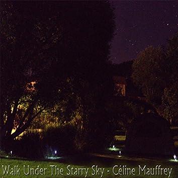 Walk Under The Starry Sky