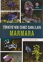 Marmara - Türkiye'nin Deniz Canlilari Ciltli
