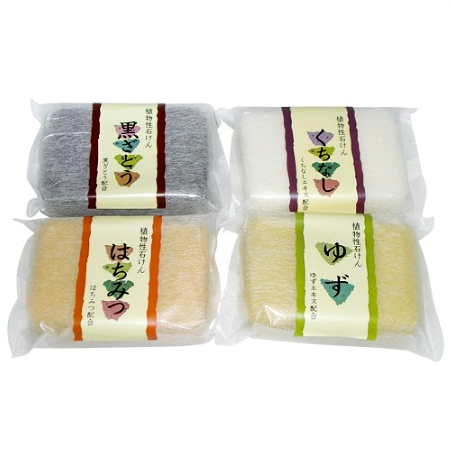 恵みペリスコープ太い植物性ソープ 自然石けん (80g) 種類おまかせ 2個セット