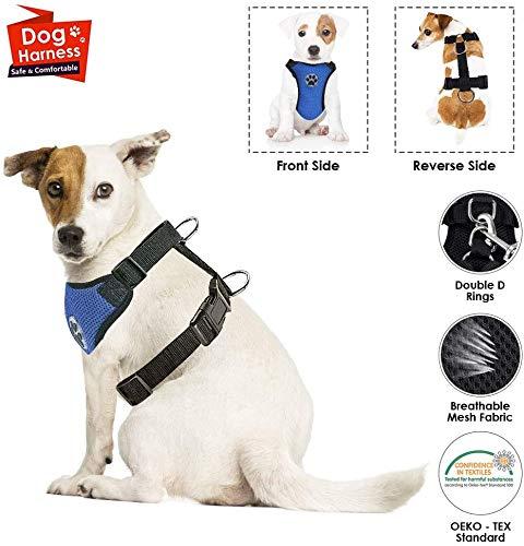 Nasjac Hundegeschirr mit Sicherheitsgurt Double luftdurchlässiges Latex-Gittergewebe Geschirr reguläre Reisenweste Autosicherheitsgurt für alle alltäglichen und sportlichen Aktivitäten dem Vierbeiner