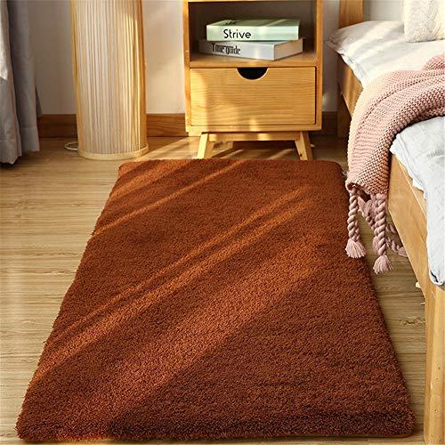 TEPPICH-CY-ZK zacht pluizig tapijt, moderne woonkamer tapijt - indoor antislip tapijt - voor slaapkamer bed - bank salontafel - formaldehyde gratis