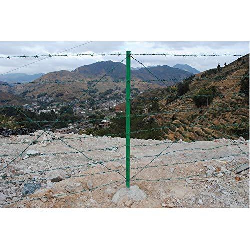 Alambre de Espino 50M Marca LSXIAO-Pantalla De Privacidad