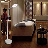 Magnifier Magnifying LED Floor Lamp, Daylight Bright Magnifier Lighted Glass 15X Magnifying Lens with Stand, Flexible Height Adjustable Gooseneck Standing Cold Light for Reading Salon Beauty Lighting