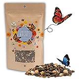 200g Semillas de pradera para mariposas para una colorida pradera de flores - mezcla de semillas de flores silvestres ricas en néctar para mariposas