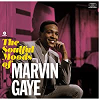 Soulful Moods of Marvin Gaye [12 inch Analog]