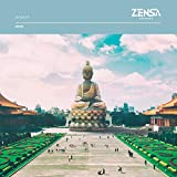 Zensa ZR003