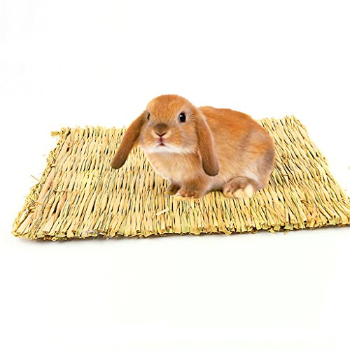 BWOGUE Natural Woven Grass Mat for Hamsters,Rabbits,Hedgehog,Guinea Pig,Bunny Bed and Other Small...