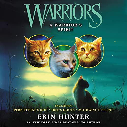 Warriors: A Warrior's Spirit cover art