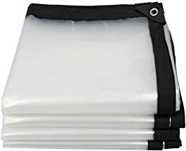 LIXIONG dekzeil transparant verdikt PE-stofdichte bescherming tegen kou, 23 maten, aanpasbaar (kleur: helder, grootte: 2x6m)