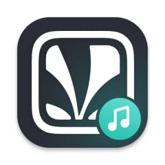 High-quality streaming Lyrics, with live sync for karaoke Exclusive audio shows Extensive Music Libraries