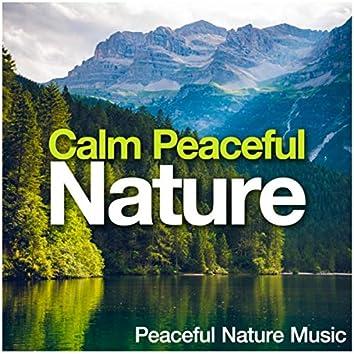 Calm Peaceful Nature